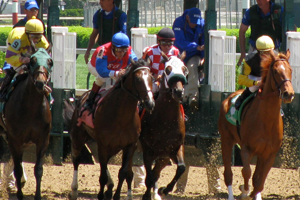 Kentucky Derby Tickets and Travel Packages