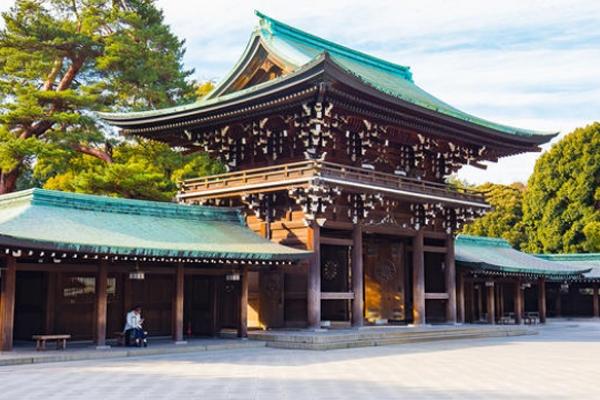 Tokyo Sightseeing Trips