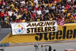 Nov. 8: Panthers at Steelers