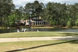 Play Golf & Masters - 5 night Partridge Inn Augusta