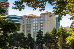 Springhill Suites Seattle Downtown Seahawks Hotel