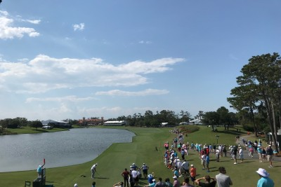 16th Fairway at TPC Sawgrass during the Players Championship Tournament