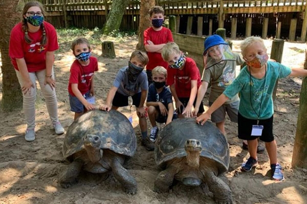 Kids with sea turtles at the St. Augustine Alligator Farm